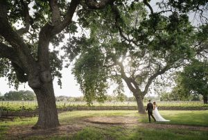 best_wedding_ photographers_santa_barbara_40.jpg