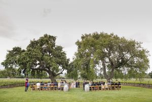 Roblar-Winery-Wedding-John-and-colette-photography-27.jpg