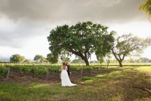 Roblar-Winery-Wedding-John-and-colette-photography-50.jpg